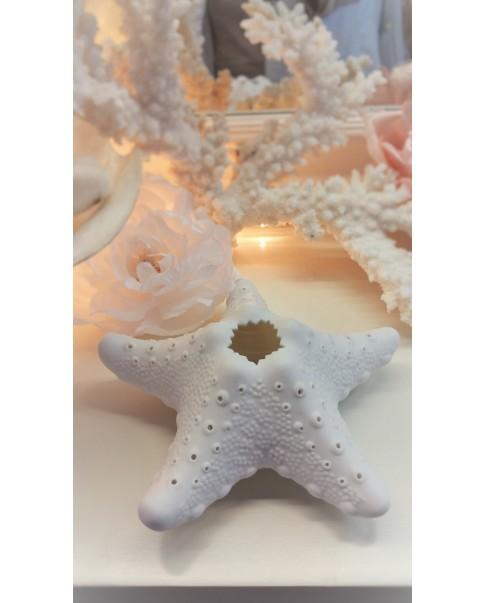 Star Porcelaine